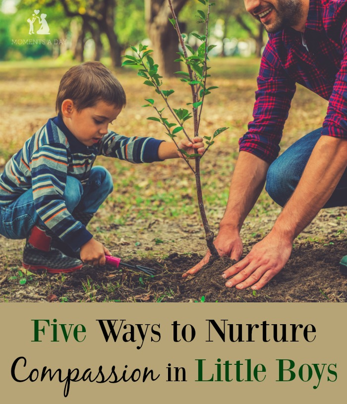 Tips and suggestions for practical ways to raise compassionate sons