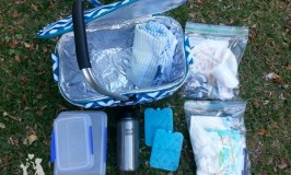Easy panning tips to make family picnics go smoothly
