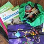 What to pack in a kids travel bag