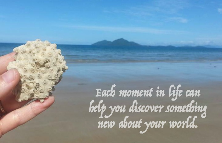Moments allow us to discover reality
