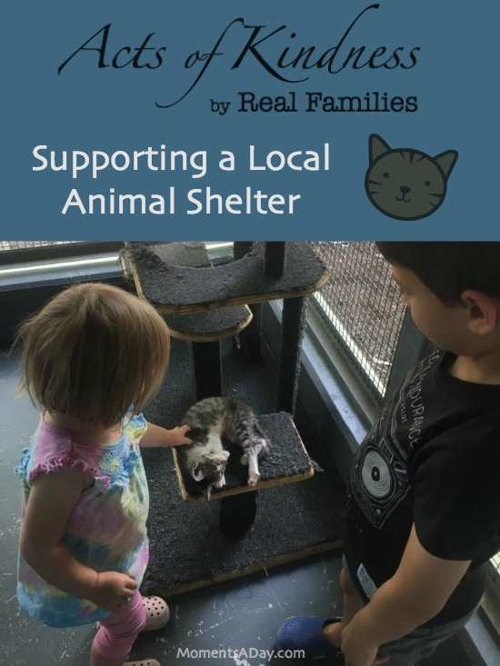 A series of acts of kindness by real families this entry featuring a family supporting a local animal shelter