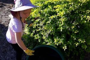 6 Ways Gardening Can Benefit Children