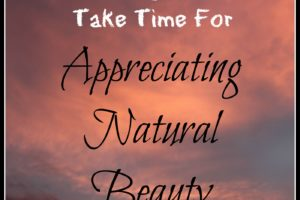 Taking a Moment To Pause and Appreciate Natural Beauty (Good For Kids And Mom)
