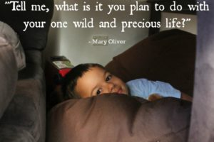 My One Wild And Precious Life: Reflections of a Stay At Home Mom