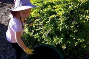 6 Ways Gardening Can Benefit Children